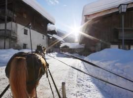 Horse-drawn carriage in Plan in Passiria (Alto Adige)