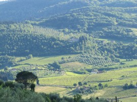 romantic and delicious holiday in Tuscany