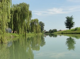 Green itineraries in the countryside between Padua and Venice