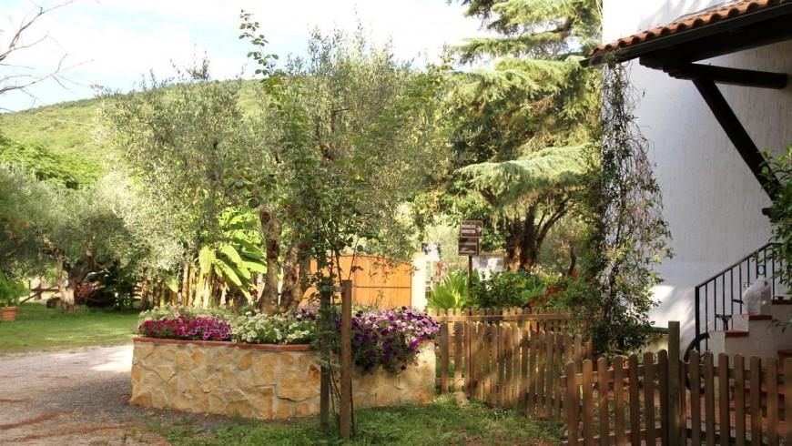Il Duchesco: organic farm in the Maremma