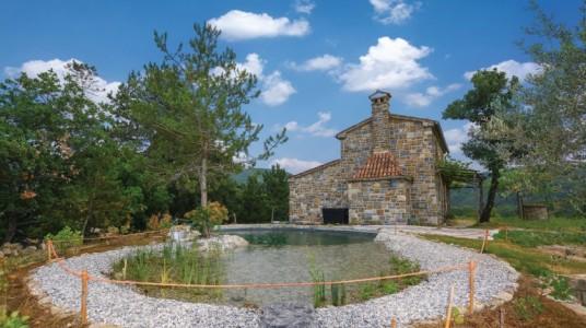 The ecologic pool in the backyard