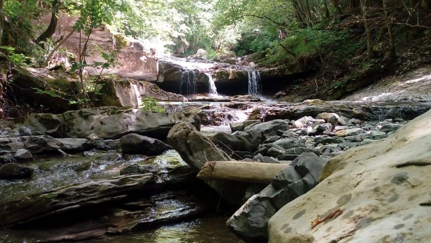 Stream in Aveto Park, Liguria, Italy