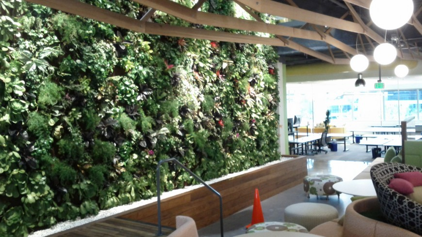 Green walls with water in Palo Alto, California, by Jack Hebert, via flickr
