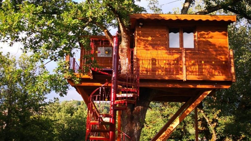Outside view of the tree-house