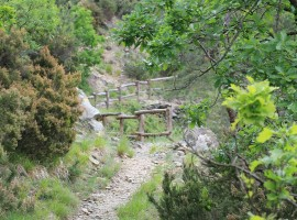 Orba's pathway -Ph Emanuele Benigni