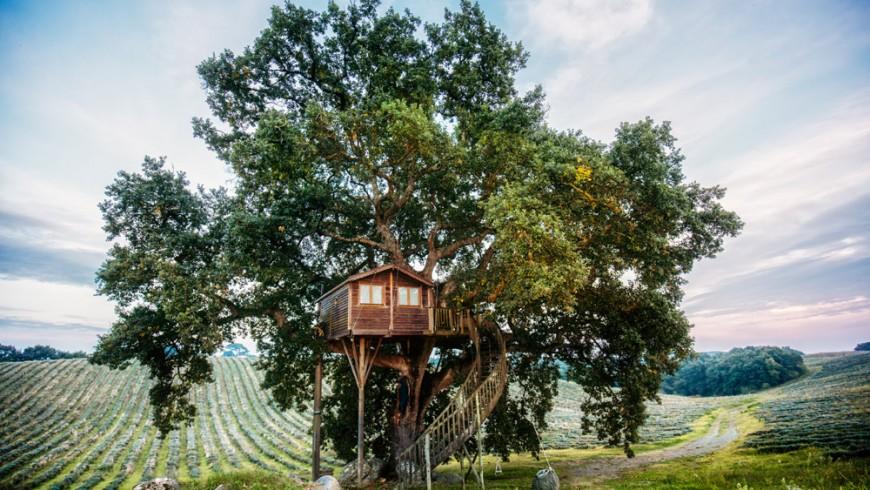 Tree-house Suite Bleue, La Piantata, Viterbo, Italy