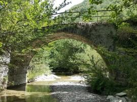 Savio River