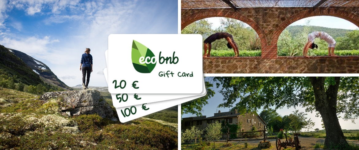 Digital Gift Cards: the benefits on the environment