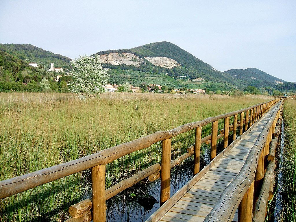 Massaciuccoli park, Tuscany