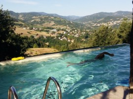 swimming pool, nido d'ape