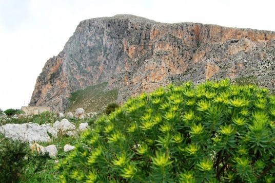 Cofano Mountain, photo via Wikimedia