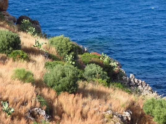 Zingaro Natural Reserve, photo via Wikimedia