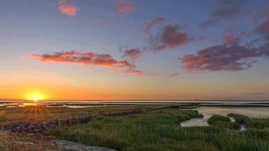 Sunrise over the Wadden Sea near the vegan bnb Vegotel