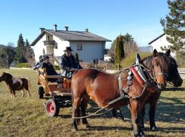 Tourist farm Pri Andrejevih