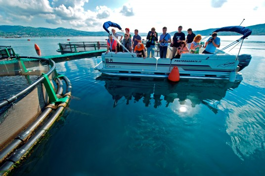 Spend a day on Fonda fish farm with the highest quality sea bass in the world