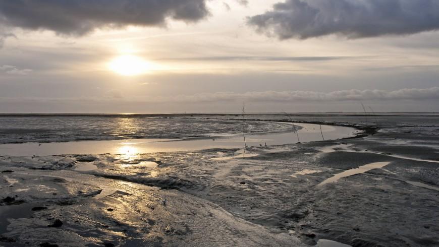 Schiermonnikoog view, photo via Flickr