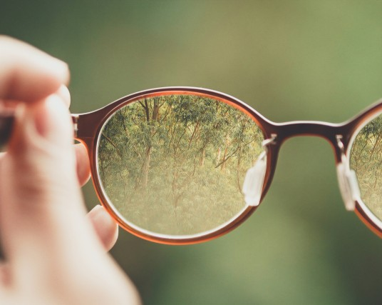 brown glasses with an ecotourism view on a forest