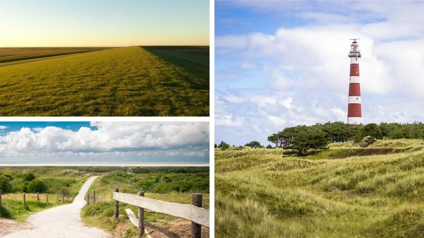 The most beautiful natural location in the Netherlands from the vegan bed & breakfast Vegotel