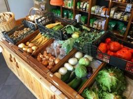 Krajcek organic store