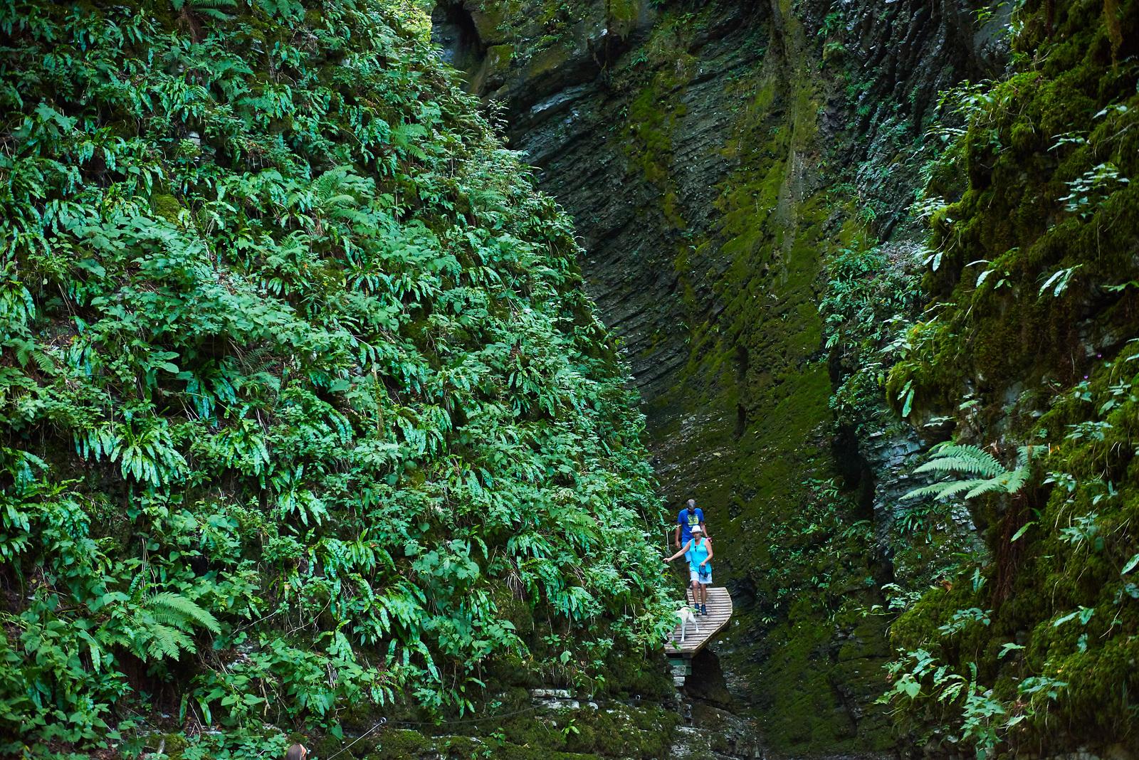 Waterfalls in Slovenia - waterfall Kozjak