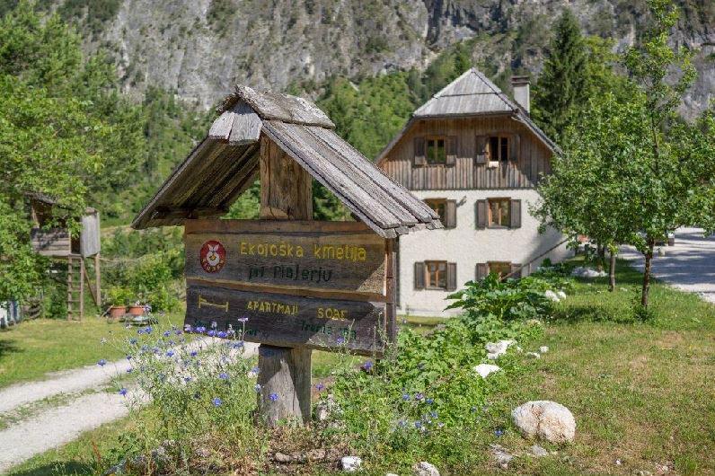 Organic Vacation Farm-Pri Plajerju