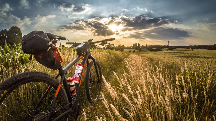 mountain bike on the trail