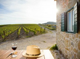 Kairos organic wine tasting - top extraordinary experiences in Dalmatia