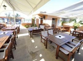 Seafood and local fish in Dalmatia - Restaurant Stara Riva