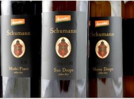 Šuman biodynamic winery - biodynamic wine holidays in Slovenia
