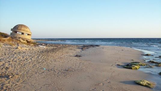 Beach of the WWF Oasis Le Cesine