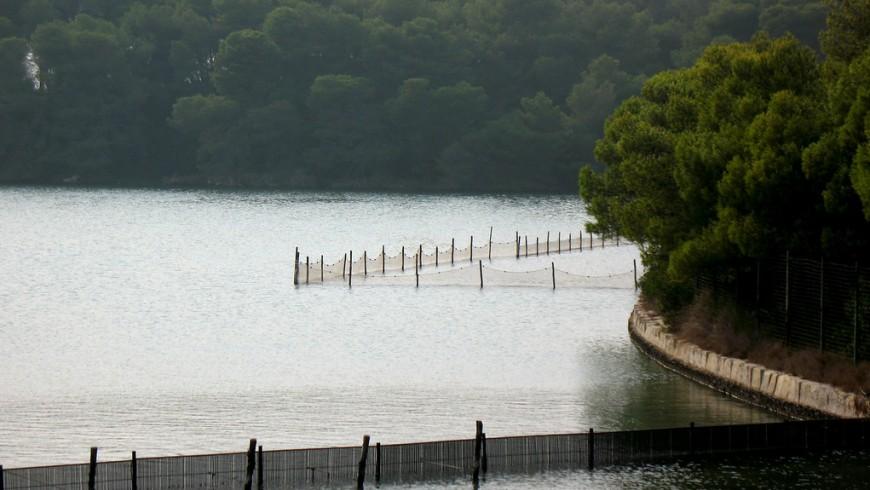 lake Alimini