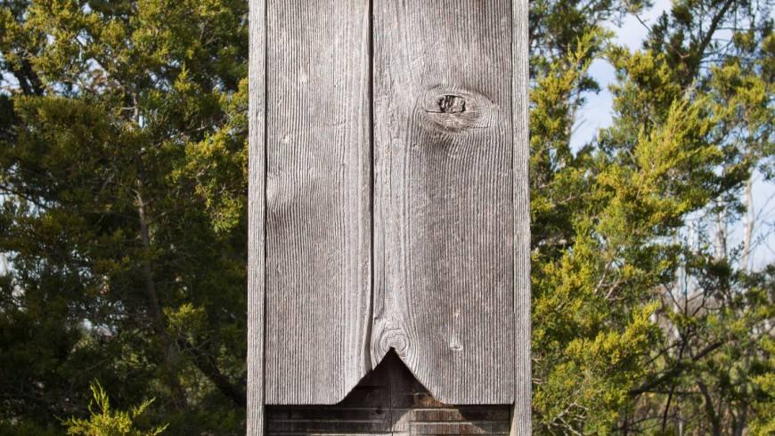 A Bat-Box hanging on a tree