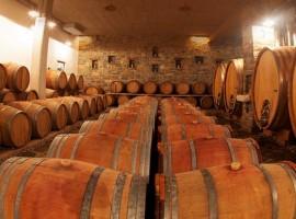 Rodica biodynamic winery - biodynamic wine holidays in Slovenia -
