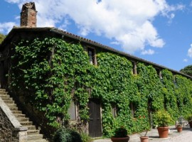 organic farmhouse in trasimeno