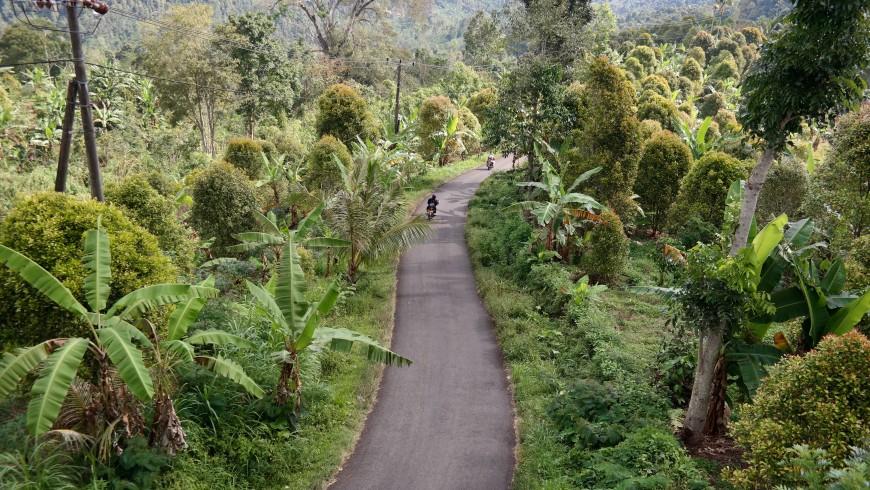 Biking in the hearth of Bali.