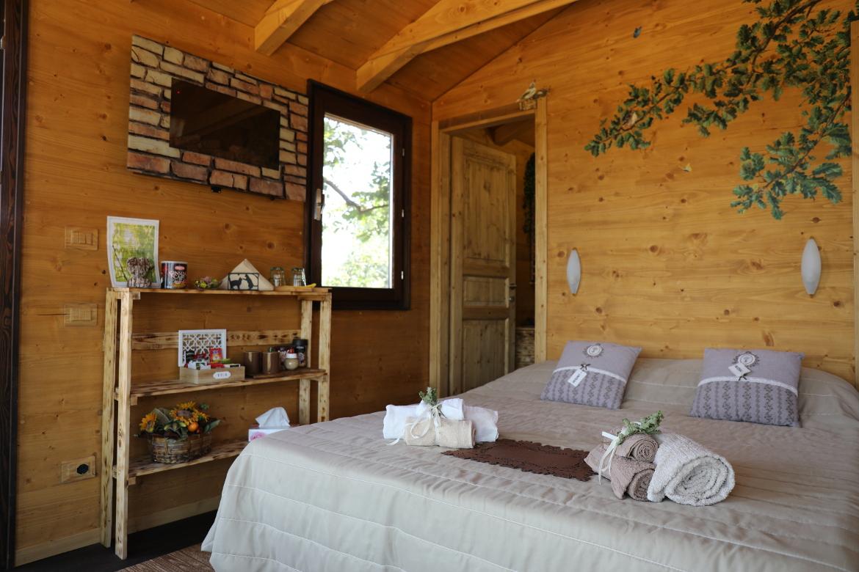 room of treehouse on oak