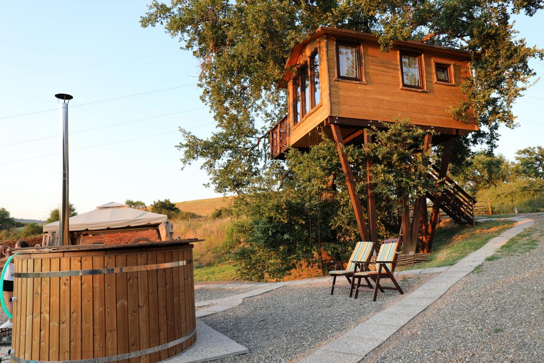 treehouse on oak