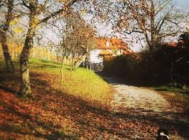 Holiday Home Enchanting Hill - autumn walks