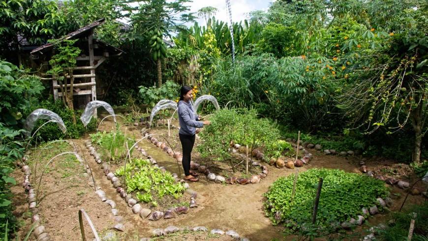 organic farm in bali