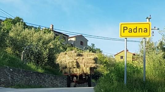 Istrian stone houses Padna - village Padna, Slovenian Istria