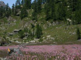 A mountain chalet in Aosta Valley