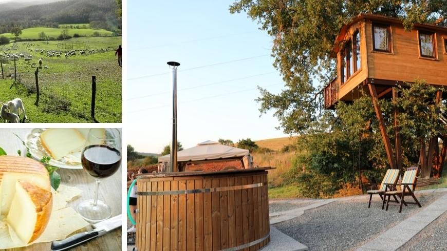 Organic farm house green tourism