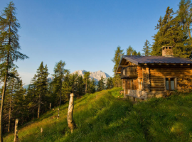 A cabin in the middle of a wood in Bergamo area
