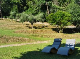 garden of the ecobnb in pietrasanta, tuscany