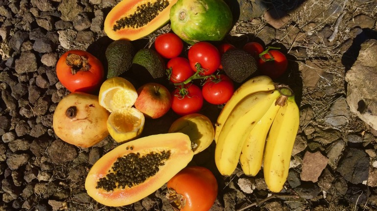 Fruits coming from local sources and vegetables from the garden in La Tanquilla, Canary Islands