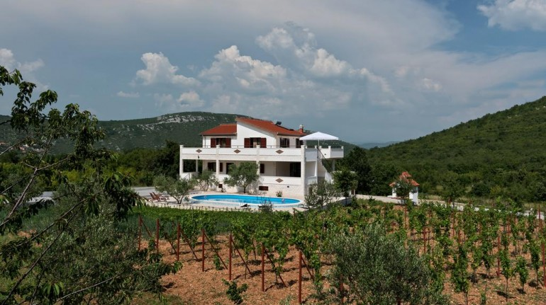 Vineyard eco villa Dalmatia