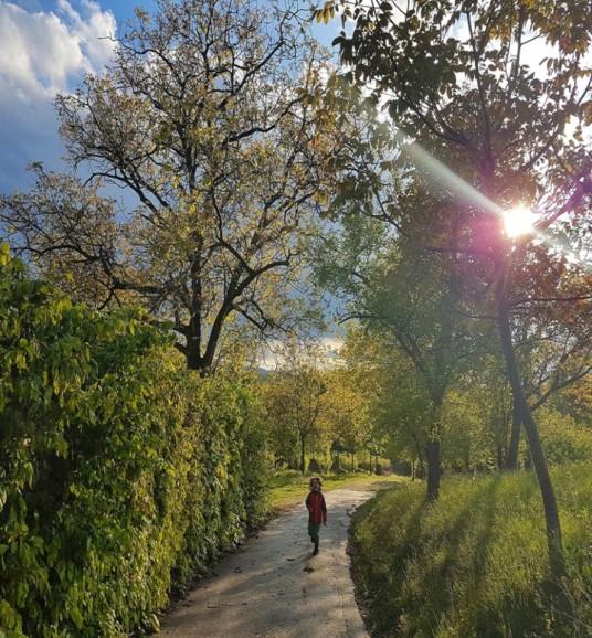 Holiday Home Enchanting Hill - surroundings