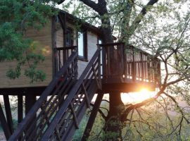 an oak house