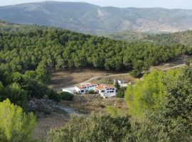 A Spanish farm perfect for birdwatching