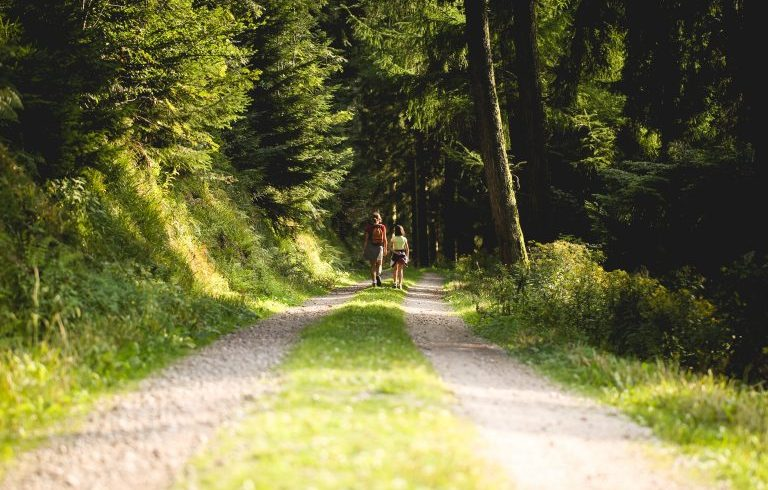 reduce greenhouse gases by going on foot